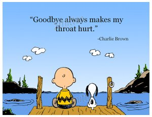 goodbye 1